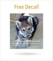 free decal w200 h200 FREE California Wolf Center Decal