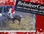 Reindeer-Cam