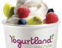 Frozen-Yogurt-at-Yogurtland