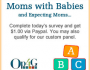 Moms-Survey