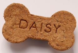 Nashville Dog Treat