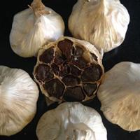 Organic-Black-Garlic