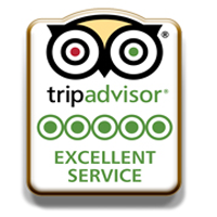 TripAdvisor Excellent Service pins 2 FREE TripAdvisor Excellent Service Pins