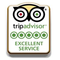 TripAdvisor-Excellent-Service-pins