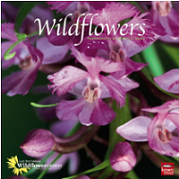 2012-Wildflower-Reference-Guide