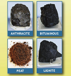 Coal Sample Kit FREE Coal Sample Kit for Teachers