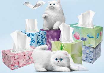 Scotties Facial Tissue Prize Pack FREE Scotties Facial Tissue Prize Pack Giveaway