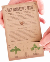 Basil And Parsley Seed Packet FREE Basil And Parsley Seed Packet