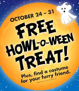 Halloween Treat at Buld A Bear FREE Halloween Treat at Buld A Bear on 10/24 10/31