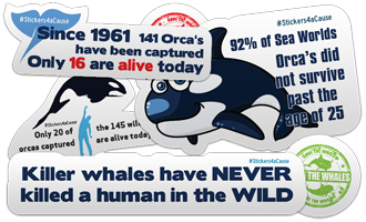 Orca whales Stickers 10 FREE Orca Whale Stickers