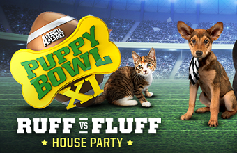 Puppy Bowl Ruff FREE Puppy Bowl Ruff vs. Fluff House Party (Apply)
