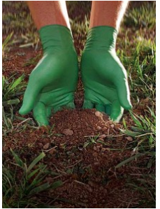 Biodegradeable Nitrile Gloves