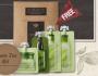 Innisfree Green Tea Moisturizing Sample Kit