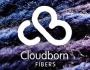 Cloudborn-Fibers
