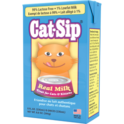 Cat-Sip