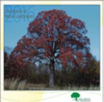 Trees-Forever-Calendar