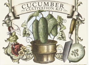 Cucumber Cultivation Kit