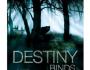 Destiny Binds