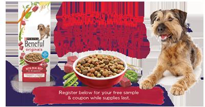 Purina-Beneful-Originals-Dry-Dog-Food