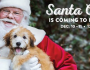 free-photo-of-your-pet-with-santa-at-petsmart