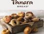 panera-bagels