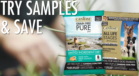 graphic about Canidae Coupons Printable known as Cost-free Canine Samples Totally free Pet dog Food stuff Free of charge Dog Resources