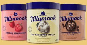 Oregon Strawberry Ice Cream - Tillamook